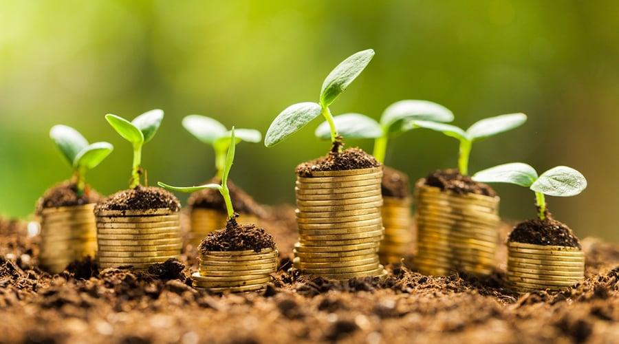 art-10-4-Algunos-consejos-para-hacer-crecer-tu-dinero copia